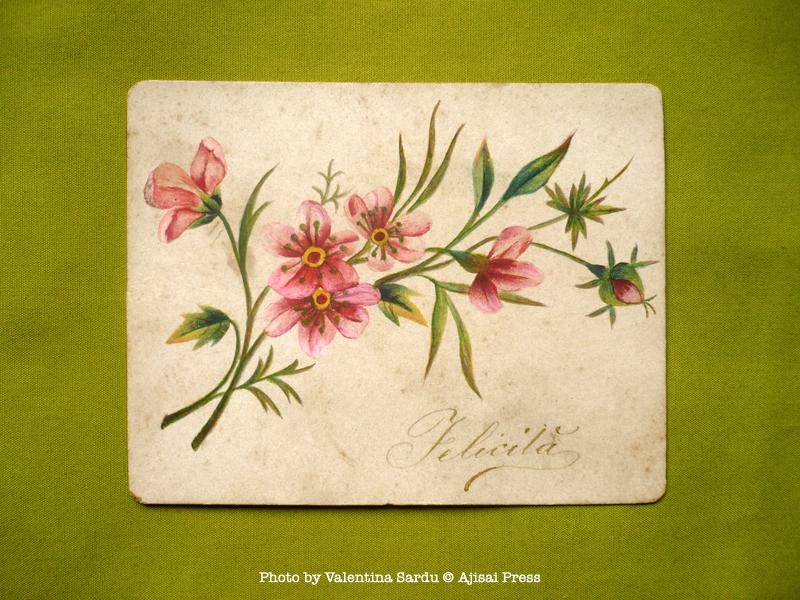 handpainted vintage postcard